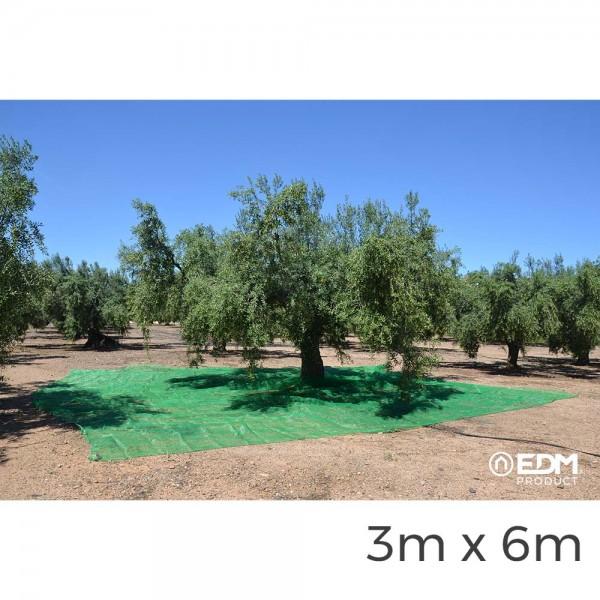 Manto para recoleccion verde aceituna 3x6m
